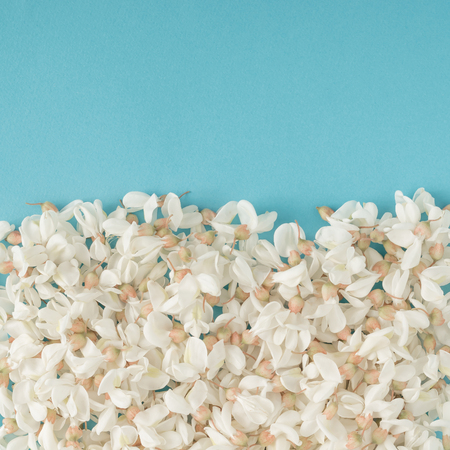 青の背景に白い花。フラットを置く