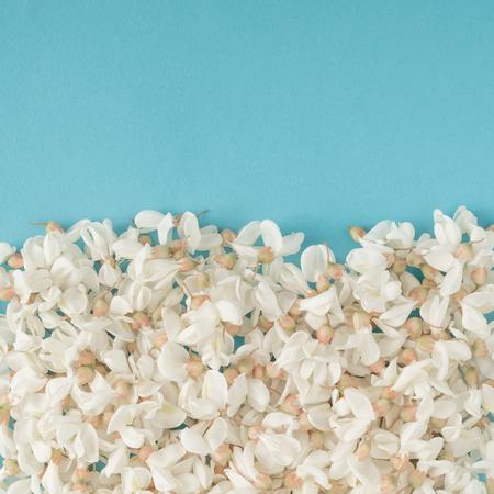 Witte bloemen op een blauwe achtergrond. plat