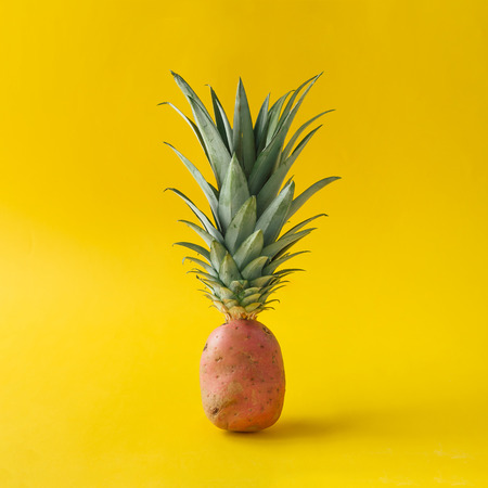 Potato with pineapple leaves on bright yellow background. Minimal fruit concept. Stock Photo
