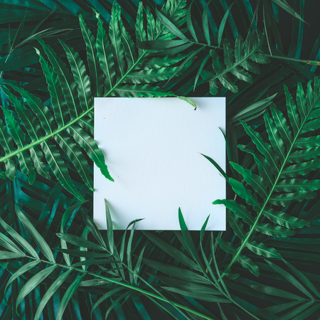 Creative layout made of tropical flowers and leaves with paper card note. Flat lay. Nature concept Archivio Fotografico