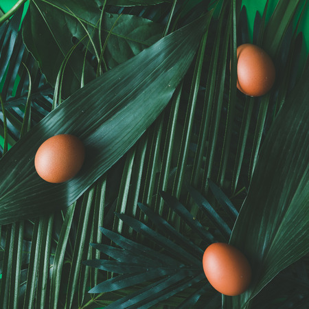 Creative tropical layout made of green leaves with eggs. Flat lay.Easter concept Stock Photo