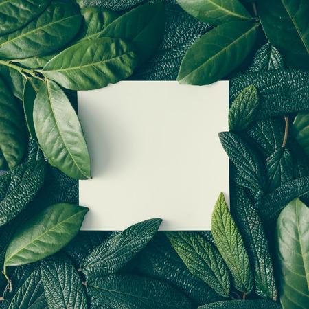 Creatieve lay-out gemaakt van groene bladeren met papieren notitie. Plat leggen. Natuur concept