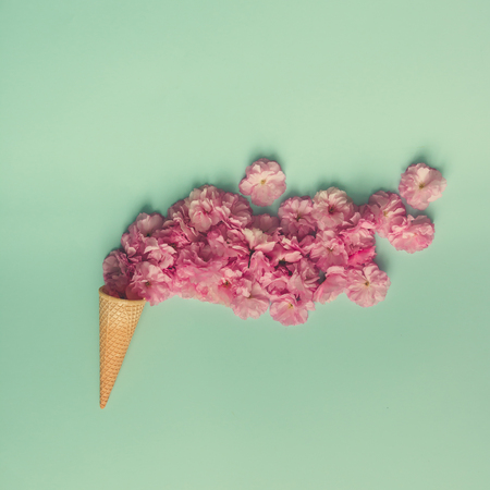 Cono De Helado Con Flores Y Hojas De Color Rosa. Verano Concepto ...
