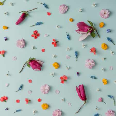 Creative pattern made of colorful spring flowers. Minimal style. Flat lay. Stock Photo