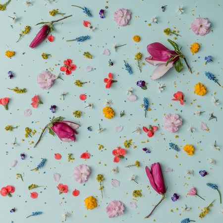 Creative pattern made of colorful spring flowers. Minimal style. Flat lay. 스톡 콘텐츠