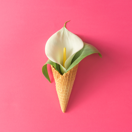 Ice cream cone with calla lily flower and leaves on pink background. Flat lay. Minimal summer concept.