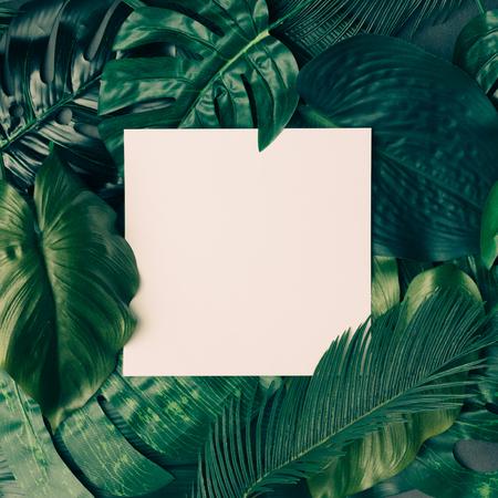 Creatieve tropische groene bladeren indeling met kopie ruimte. Natuur lente concept. Vlak liggen.