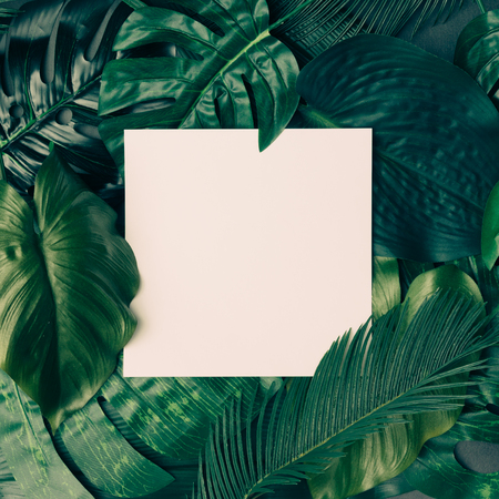 Creative tropical green leaves layout with copy space. Nature spring concept. Flat lay. Banco de Imagens