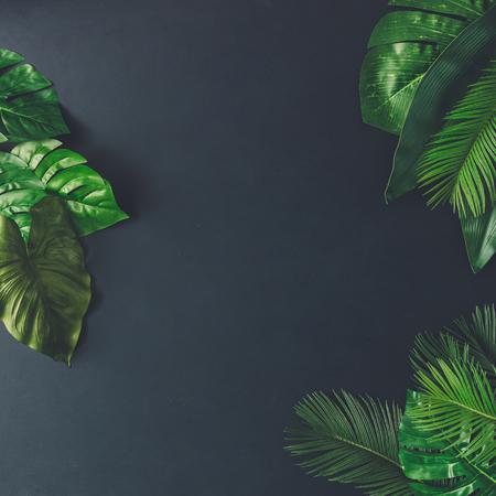Disegno natura creativo fatto di foglie e fiori tropicali. Piatta piano. Concetto estivo. Archivio Fotografico - 76186292