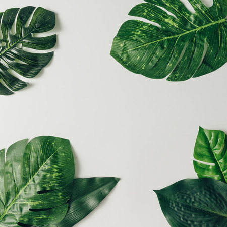 Creative nature layout made of tropical leaves and flowers. Flat lay. Summer concept. Imagens - 76695988