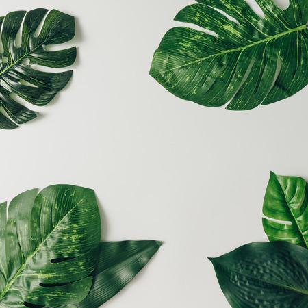 Disegno natura creativo fatto di foglie e fiori tropicali. Piatta piano. Concetto estivo. Archivio Fotografico - 76695988