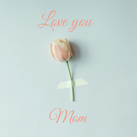 Tulip flower taped to bright background with text Love you Mom Minimal Mothers day concept