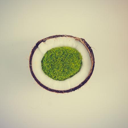 Ilha tropical de coco. Conceito de verão mínimo. Leito plano.