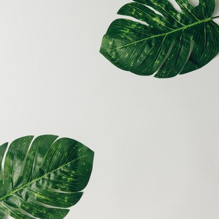 Layout criativo da natureza feito de folhas e flores tropicais. Leito plano. Conceito de verão. Banco de Imagens