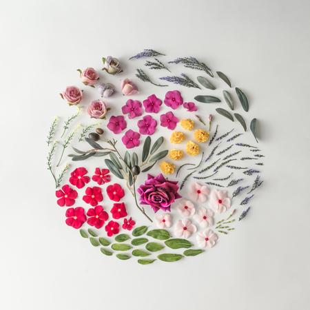 Disposition créative faite de fleurs variées. Flat lay. Contexte de la nature