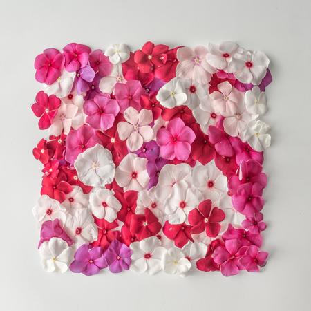 Creatieve patroonuitleg gemaakt van verschillende bloemen. Vlak liggen. Natuur achtergrond