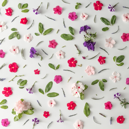 Creative pattern layout made of various flowers. Flat lay. Nature background