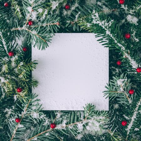 Kreativní rozložení větví vánočního stromku se sněhem a papírovou kartou. Ploché leželo. Příroda Nový rok koncepce.