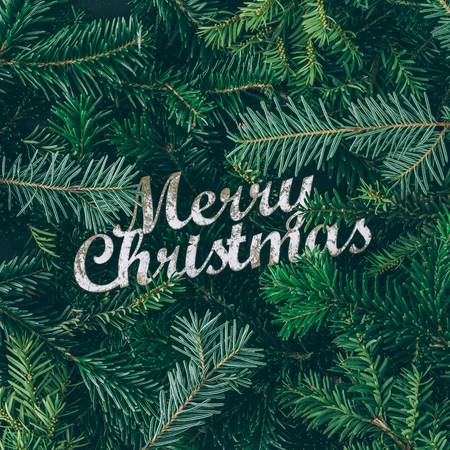 크리 에이 티브 레이아웃 메리 크리스마스 기호로 크리스마스 트리 분기했다. 평평한 평신도. 자연 새 해 개념입니다.