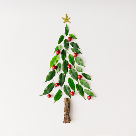 Christmas tree made of leaves and branch. Flat lay. New Year nature minimal concept.
