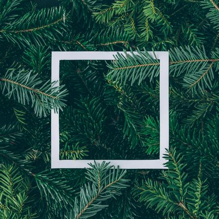 Diseño creativo hecho de ramas de árboles de Navidad con nota de tarjeta de papel. Endecha plana. Concepto de año nuevo de la naturaleza.