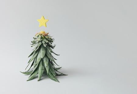 聖誕樹由菠蘿葉子和聖誕節裝飾做成。假日概念。