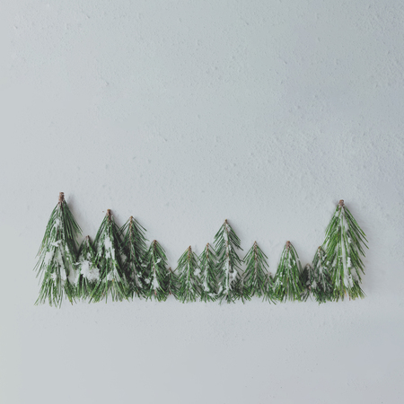 Evergreen pine forest treeline made of tree branches and snow.
