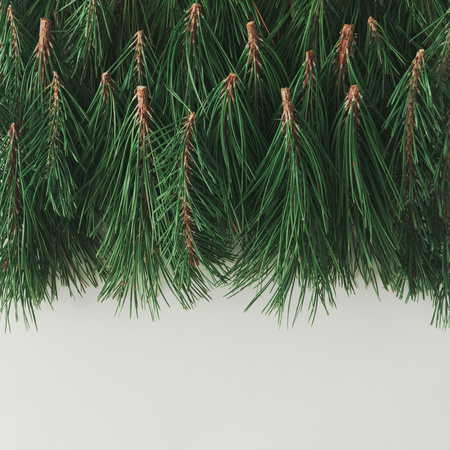 Creative layout made of Christmas tree branches. Holiday background. Flat lay. Stock Photo - 92611191