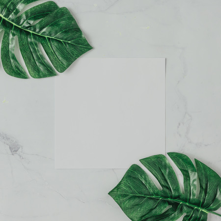 Creative natural layout made of tropical leaves on marble background. Flat lay composition.