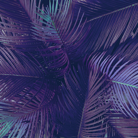 Creative tropic purple leaves layout. Supernatural concept. Flat lay. Ultra violet colors. Stock Photo
