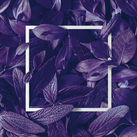 創造的な熱帯紫色の葉のレイアウト。超自然的な概念。フラットレイ。紫外線の色。