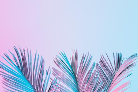 Hojas tropicales y palmeras en vibrantes colores holográficos degradados. Arte conceptual. Mínimo surrealismo.