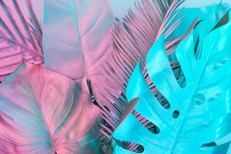 Feuilles tropicales et de palmier dans des couleurs holographiques dégradées audacieuses. Art conceptuel. Surréalisme minimal. Banque d'images