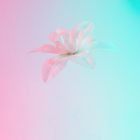 White flower in vibrant bold gradient holographic colors. Concept art. Minimal surrealism.