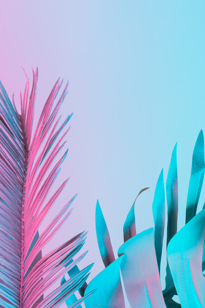 鮮やかな太字のグラデーションホログラフィックカラーのトロピカルリーフとヤシの葉。コンセプトアート。最小限のシュールレアリスム。