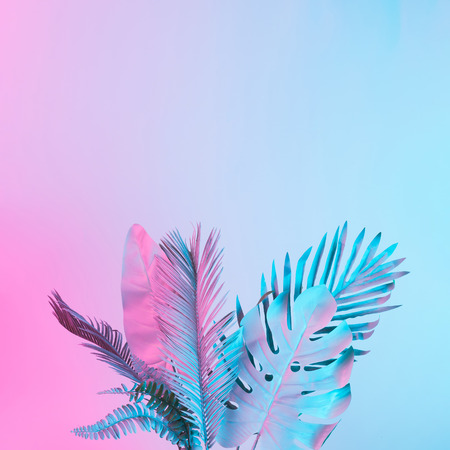 Tropical and palm leaves in vibrant bold gradient holographic colors. Concept art. Minimal surrealism. 免版税图像