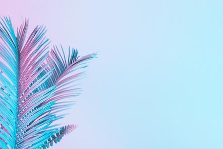 鮮やかな太字のグラデーションホログラフィックカラーのトロピカルリーフとヤシの葉。コンセプトアート。最小限のシュールレアリスム。 写真素材 - 98106094