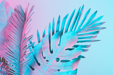 Tropical and palm leaves in vibrant bold gradient holographic colors. Concept art. Minimal surrealism. Banco de Imagens