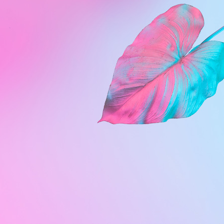 Tropical and palm leaves in vibrant bold gradient holographic neon  colors. Concept art. Minimal surrealism background. Фото со стока - 98190672