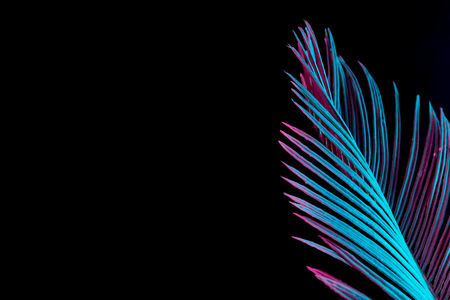 鮮やかな大胆なグラデーションホログラフィックネオンカラーのトロピカルリーフとヤシの葉。コンセプトアート。最小限のシュールレアリスムの