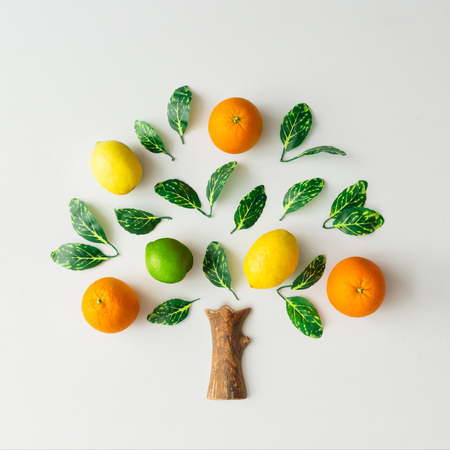 Tree made of citrus fruits, oranges, lemons, lime and green leaves on bright background. Creative flat lay nature concept. Archivio Fotografico