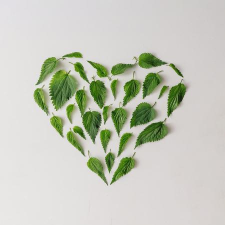 Creative nettle leaves heart shape. Minimal nature love concept. Flat lay.