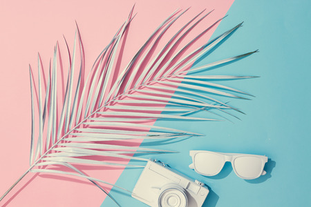 Beach accessories and palm leaves on pastel pink and blue background with copy space. Summer is coming concept. Minimal flat lay. Zdjęcie Seryjne - 106047558