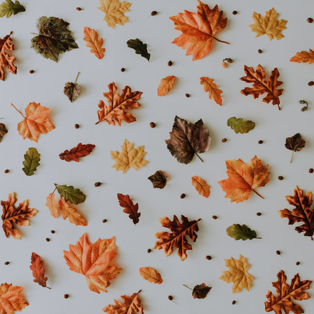 Creative autumn pattern made with yellow fallen laeves and berries. Minimal flat lay. Nature concept.