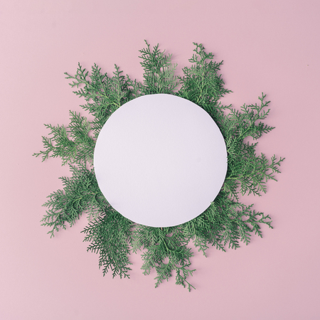 Christmas composition. Christmas frame made of winter plants on pink table background. Flat lay, top view, copy space. New Year sale card.
