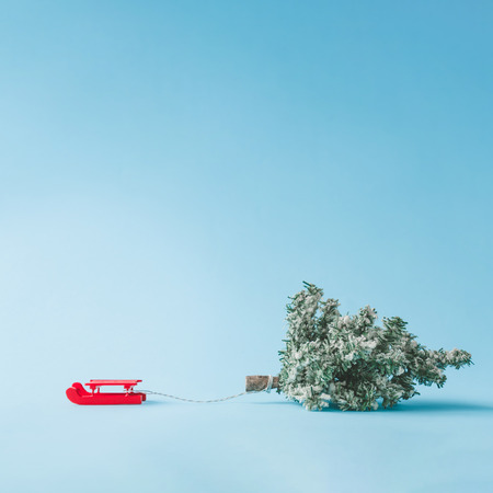 Red Santas sleigh pulling Christmas tree with bright blue background. Winter holidays minimal concept.