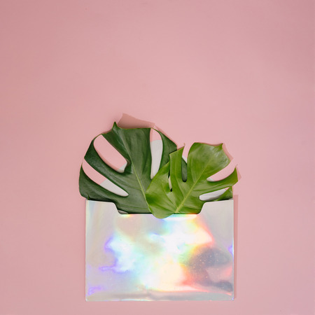 Monstera leaves in holographic Iridescent letter envelope on pastel coral background. Minimal composition. Tropical flat lay.