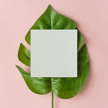 Creative layout made with monstera leaf and paper card note on pastel pink background. Minimal nature composition with copy space.