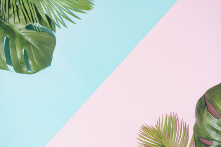 Tropical background with pastel pink and blue copy space. Minimal summer concept. Flat lay.