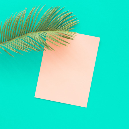 Tropical palm leaf with pink paper card note on vivid blue background. Minimal summer composition. Flat lay. Imagens